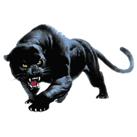 Panther Png PNG Image
