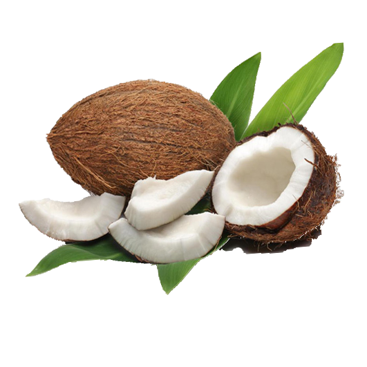 Water Coconut Oil Milk Meat Download HD PNG PNG Image