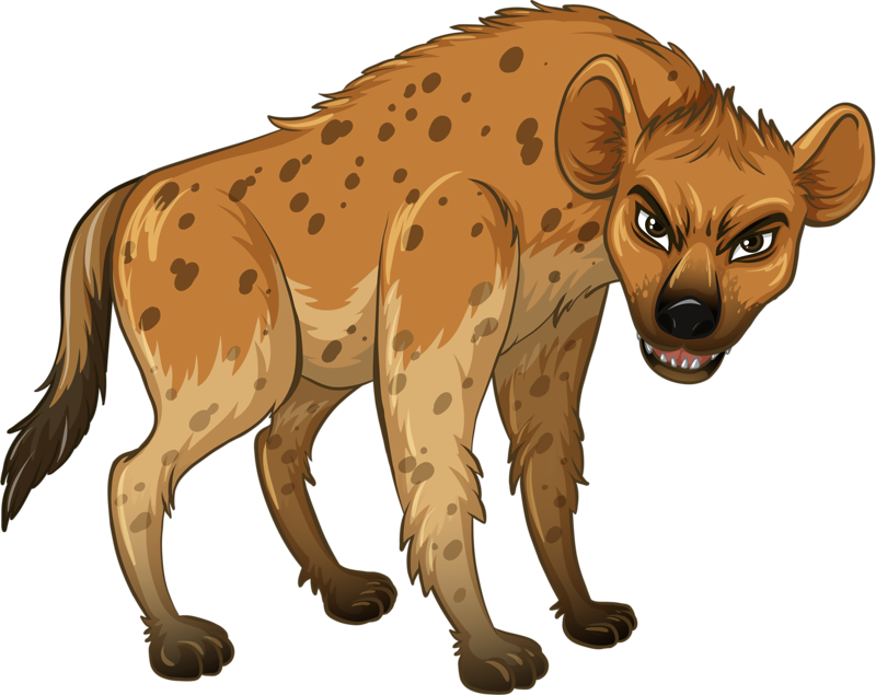 Hyena Wolf Wildlife Ferocious Illustration Free Download Image PNG Image