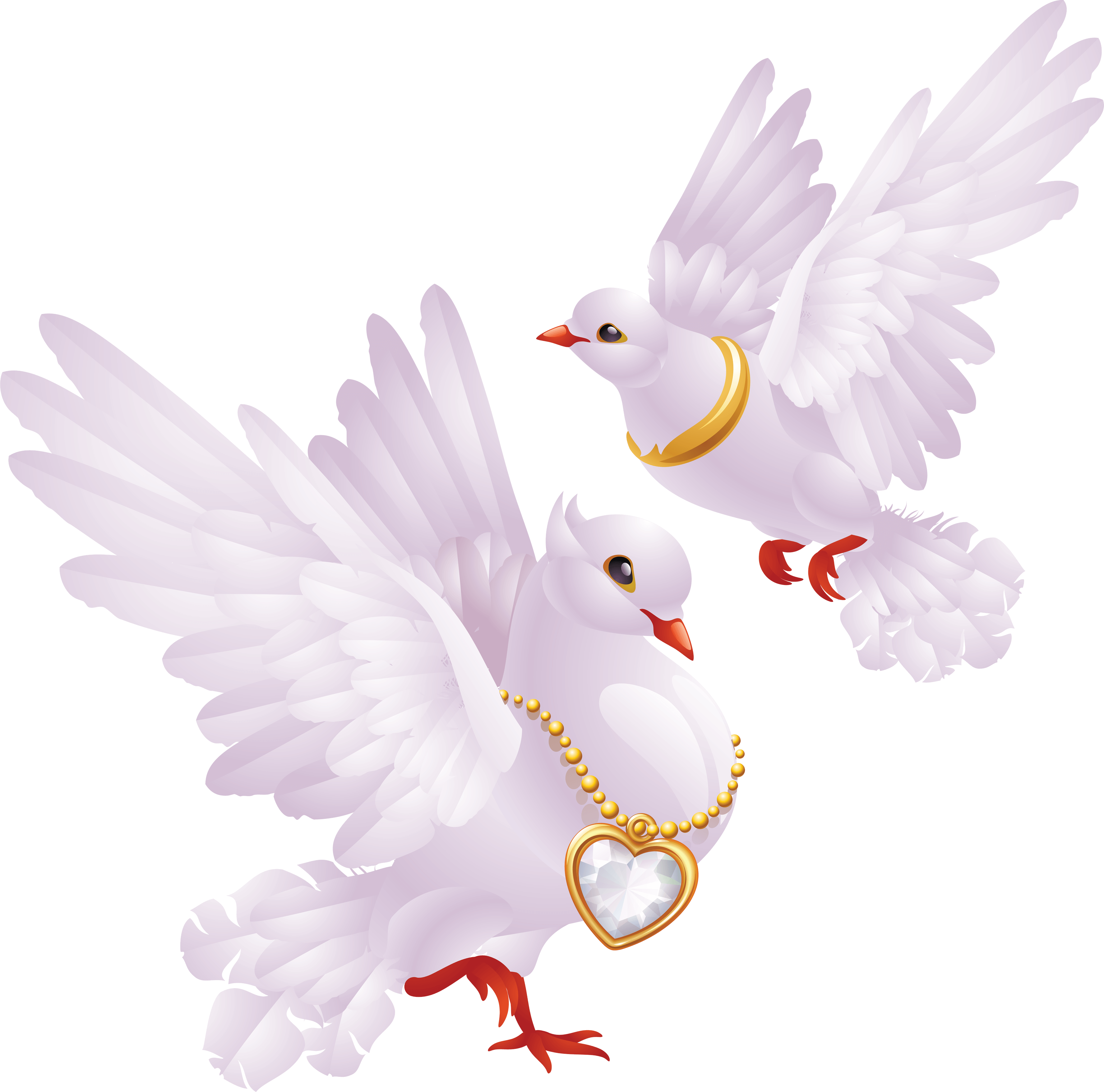 White Pigeons Png Image PNG Image