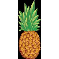 pineapple emoji png. pineapple png image download png emoji