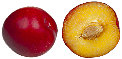 Plum Free Download Png PNG Image