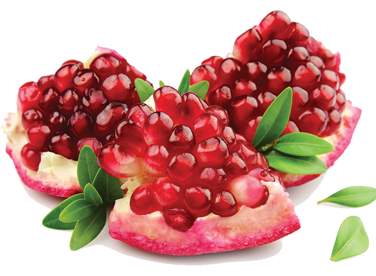 Pomegranate Image PNG Image