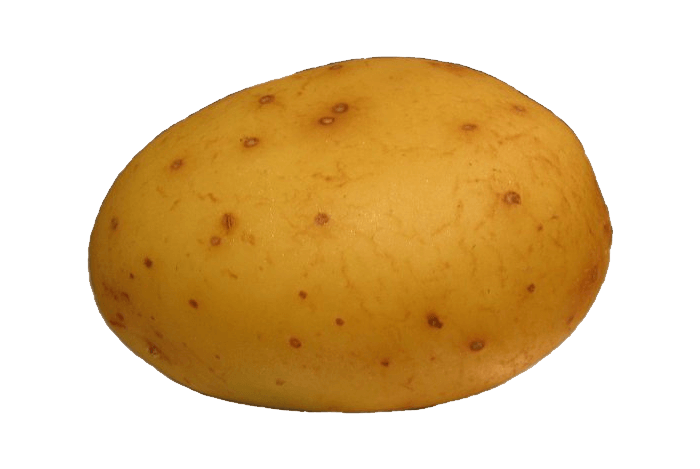 Potato Png Images Pictures Download PNG Image