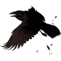 Raven Png PNG Image