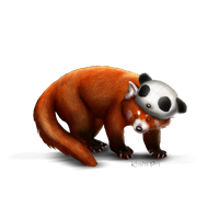 Red Panda Png Picture PNG Image