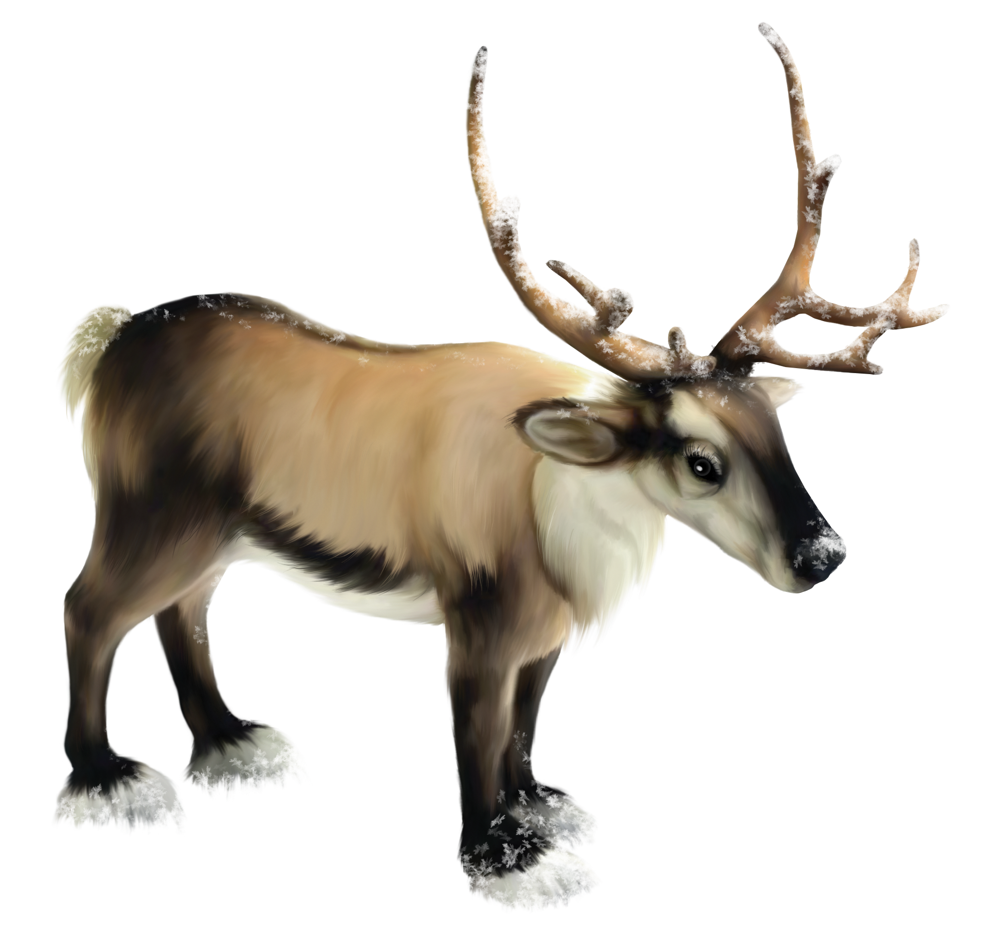 Reindeer Png Clipart PNG Image