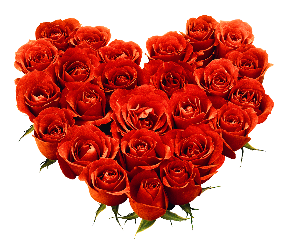 Rose Bunch Transparent PNG Image