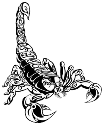 Scorpion Tattoos Transparent PNG Image