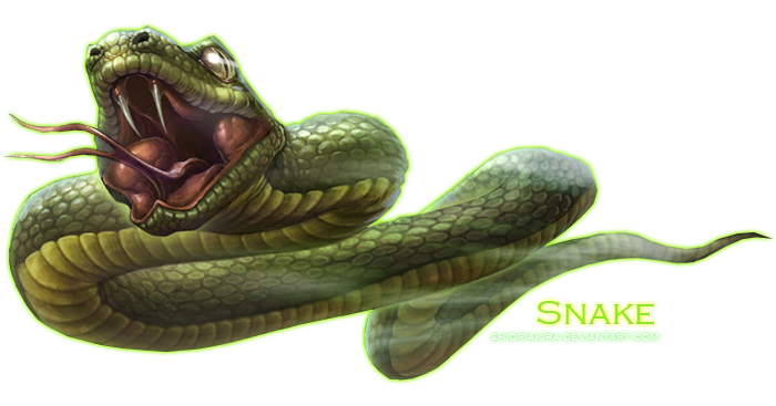 Snake Png Clipart PNG Image