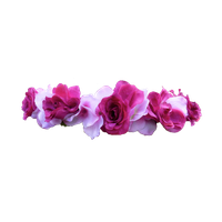 Snapchat Flower Crown Transparent PNG Image