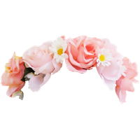 Snapchat Flower Crown Photo PNG Image
