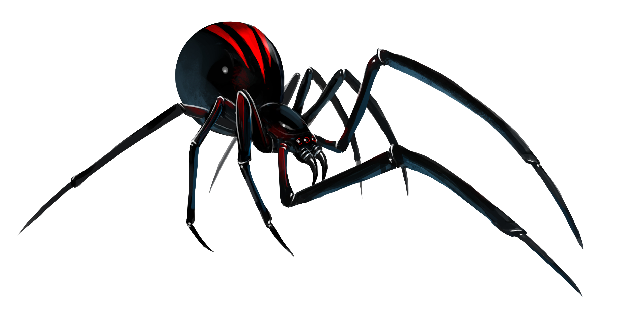 Black Widow Spider File PNG Image