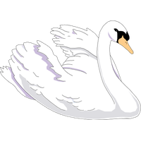 Swan Clipart PNG Image