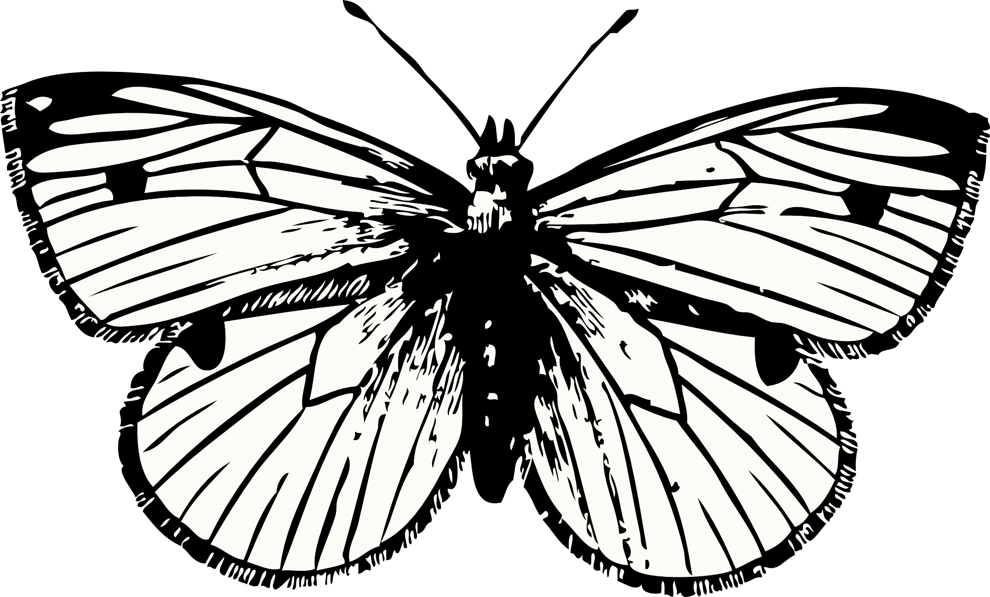 Butterfly Tattoo Png PNG Image