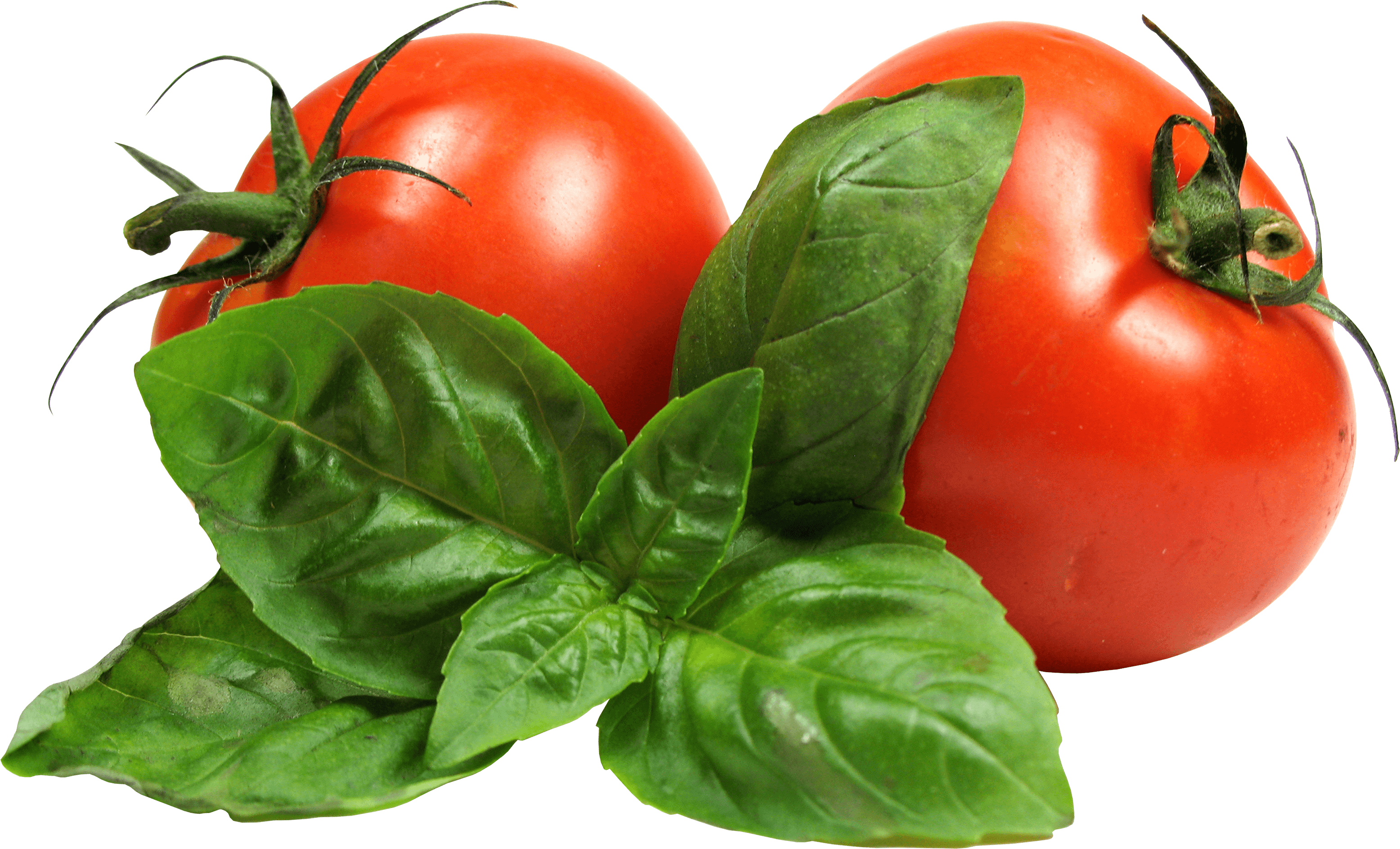 Tomato Png Image Picture Download PNG Image