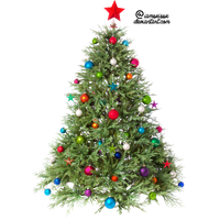 Christmas Tree Transparent Image PNG Image