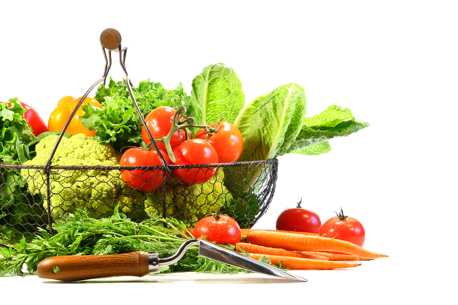 Vegetable Png Image PNG Image
