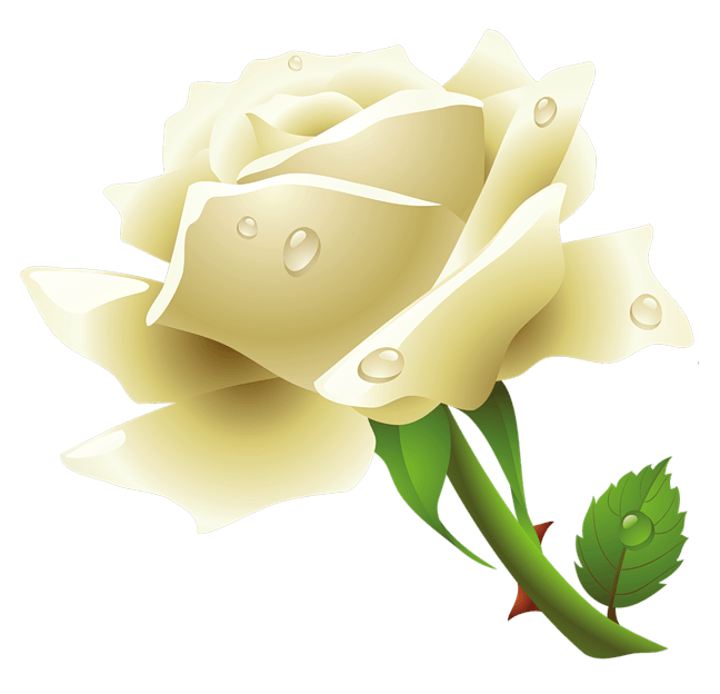 White Rose Png Image Flower White Rose Png Picture PNG Image