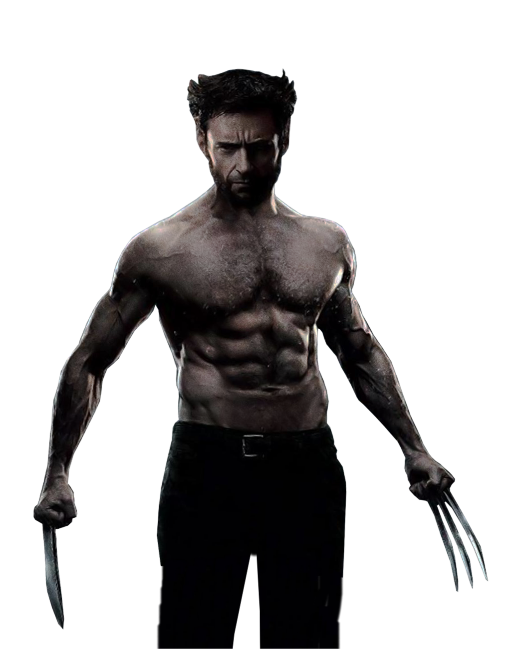 Wolverine Image PNG Image